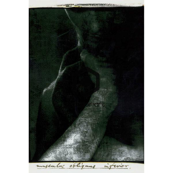 Nicolas Terrier - art numérique - Scans-3
