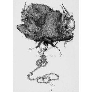 04SurconstructionSerie---[Corpus-Rosa]--Alexis Armion