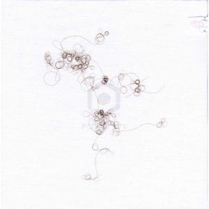 Cheveux-cousus-160217---Alice-Calm