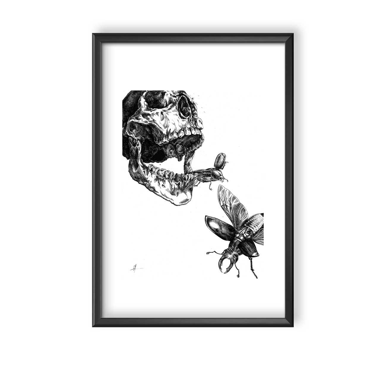 Entomophage-Camille-Murgue