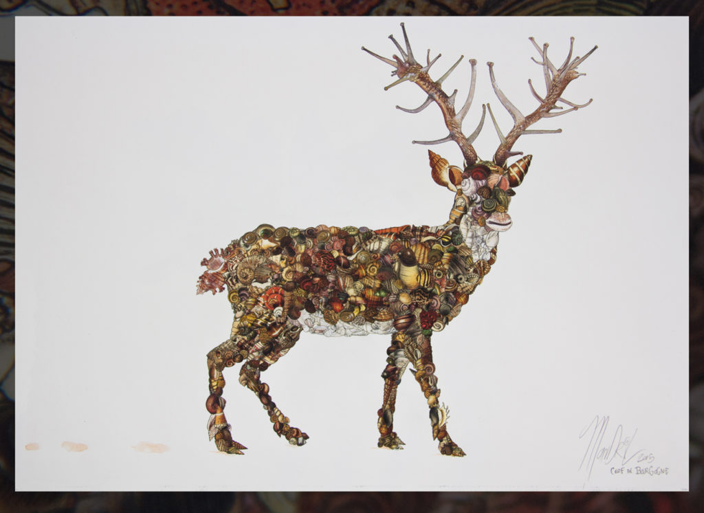 Mini cerf de bourgogne marc mandril peinture digitale
