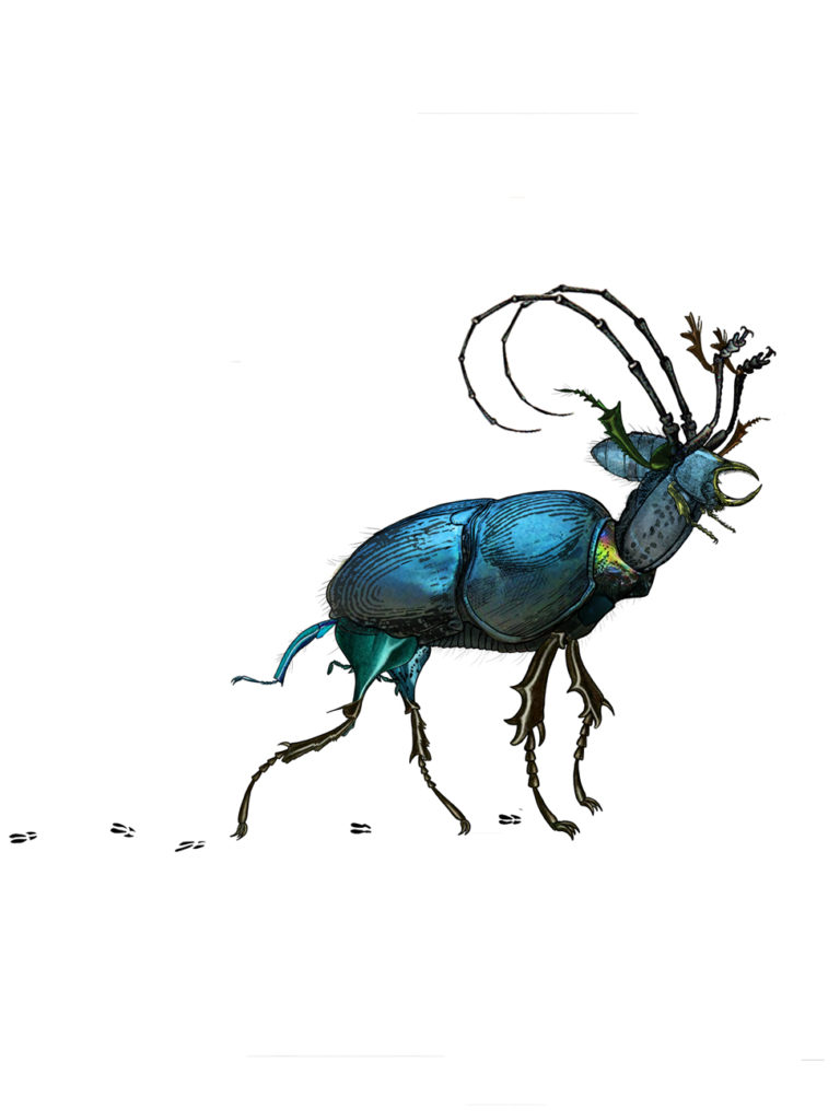 Mini cerf scarabé