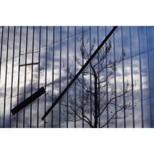 Mini-Le-soleil-brille,-indifférent-aux-souffrances-humaines-Sebastien-Fantini-photographie-d'art-contemporaine