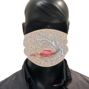 simu bouche Masque reutilisable coronavirus Pandorart AFNOR